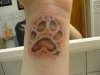 Wolf paw. tattoo
