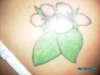 """My tea leafs and """"stinkin Benjamins"""" tattoo"""