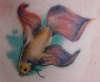 Betta Tattoo