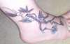 Cherry Blossom and Virginia Creeper tattoo