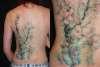 Soft Cherry Blossoms tattoo