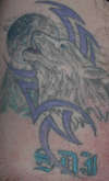 Wolf w/tribal tattoo