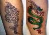 Fore Arm Dragon, Before and After tattoo