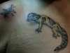 leopard gecko and grass hopper tattoo